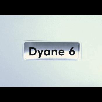 BADGE DYANE 6